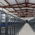 Estação Quarentenária de Cananéia inaugura novas instalações para receber suínos importados
